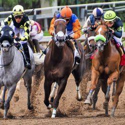 חוקי בטיחות חדשים במסלול מירוצי הסוסים בקליפורניה
