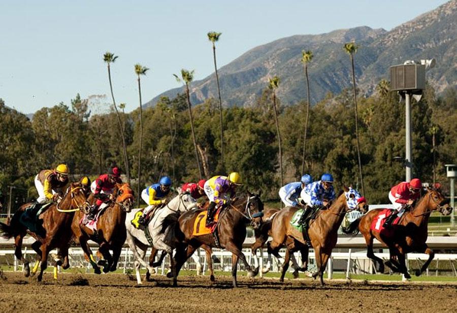מירוצי סוסים סנטה אניטה פארק קליפורניה