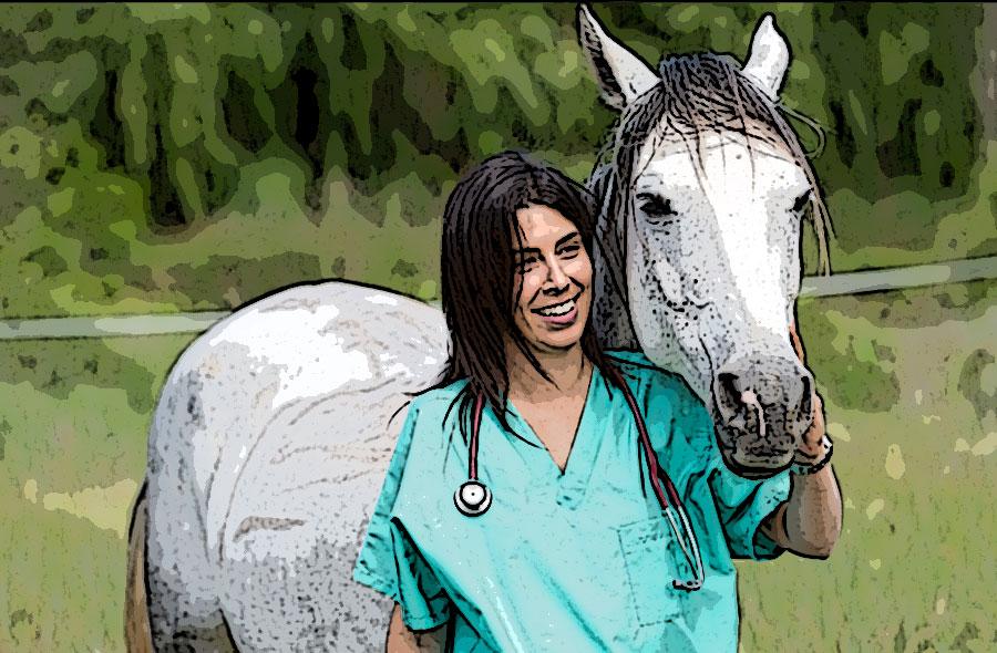 וטרינרית סוסים