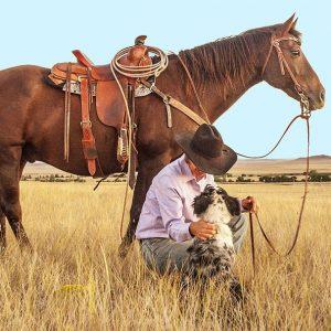 500 מייל – סיפורם של סוסים וחוואים