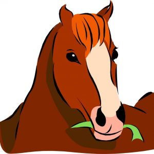 סיפור הצלה של שלושה סוסים