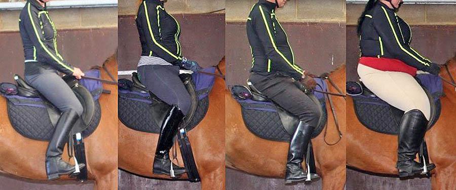 משקל הרוכב על הסוס