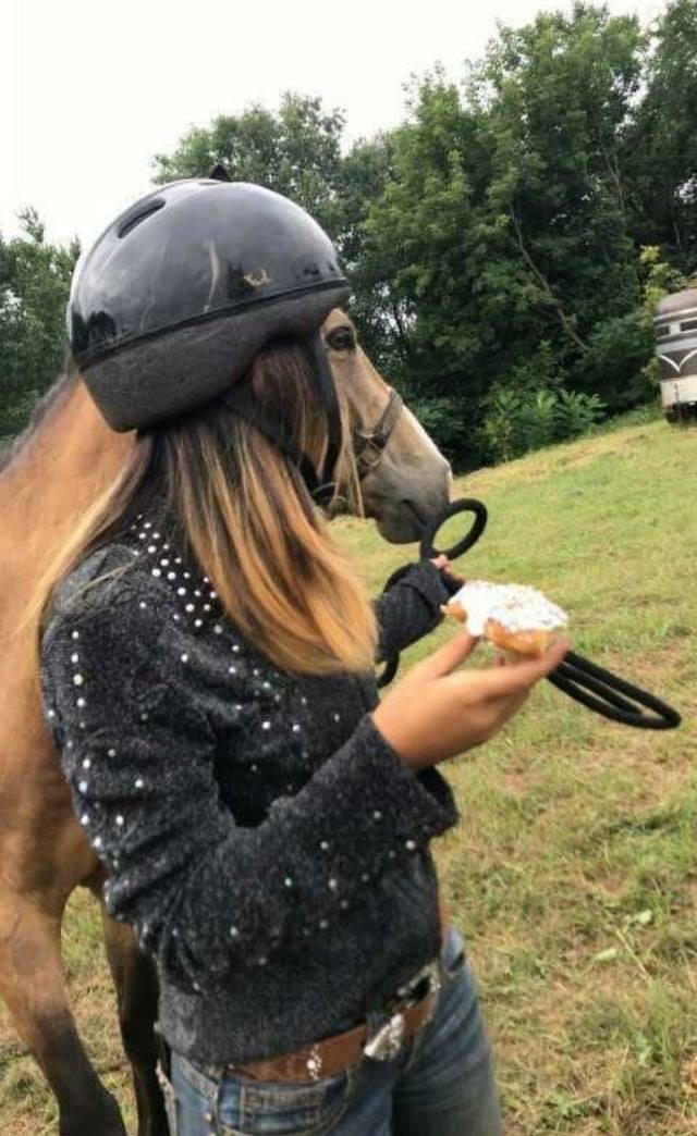 פרצוף סוס