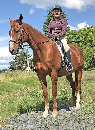 רכיבה על סוסים בגיל מבוגר