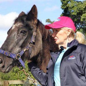 הסוס המבוגר ביותר בעולם חוגג יום הולדת 50