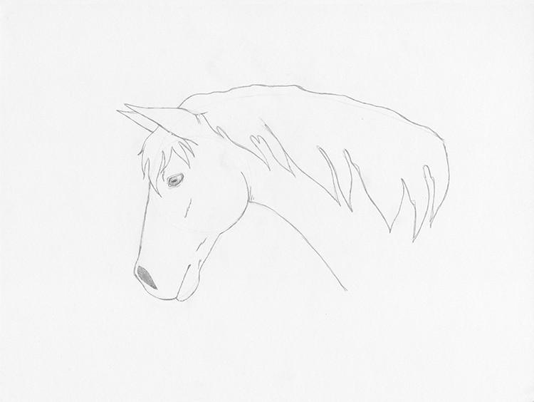 איך לצייר סוס