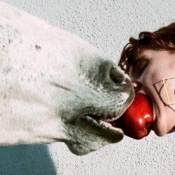 גוצ'י חוזרים למקורות עם קמפיין אופנה מלא בסוסים