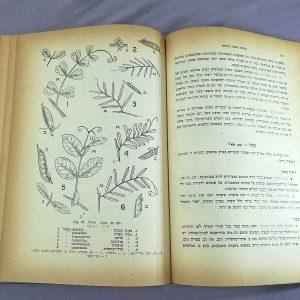 המרעה הטבעי בישראל – הוצאת ספריית פועלים, 1959