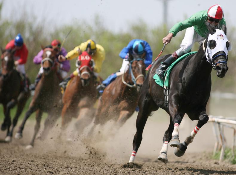 שימוש בשוט במירוצי סוסים
