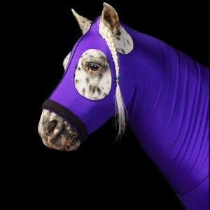 סוסים עם מסיכה ועוד שלל תמונות