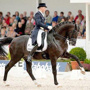 הסוס טוטילאס, אגדת דרסז', מת בגיל 20