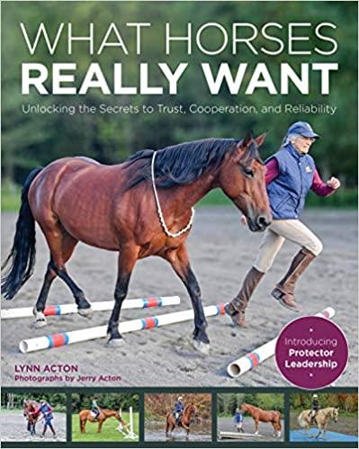 מה סוסים רוצים