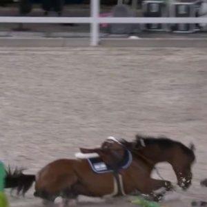 הרוכב טדי וולק נפל מהסוס במוקדמות נבחרות בקפיצות ראווה בטוקיו; ישראל לא העפילה לגמר