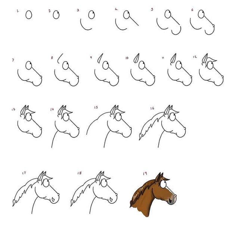 איך מציירים סוס